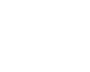 Logo Eclips 04 2